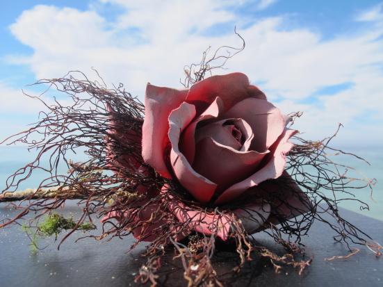 Neel Korteweg Zoute rode roos