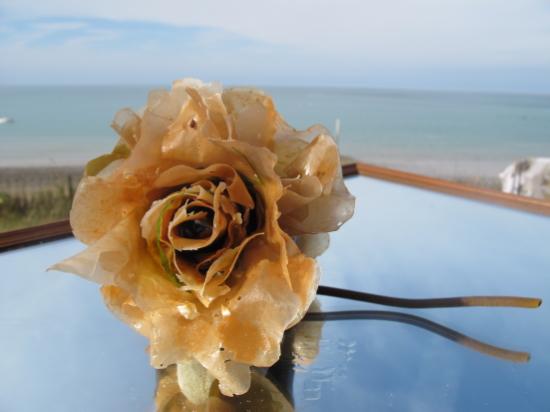 Neel Korteweg Zoute rozen gerold suikerwier 2012