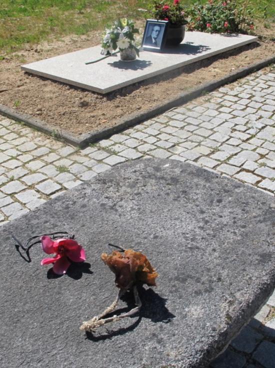 Neel Korteweg Zoute rozen voor Gerrit Komrij